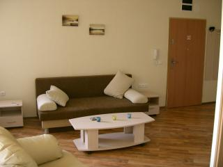 Studio Apartment Sofa Bed and Lounge Area