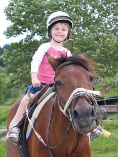 Horse trek 20 mins away