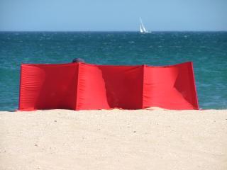 Colour on Meia Praia Beach