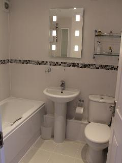 New Bathroom for 2013