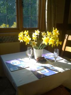 DAFFODILS FROM THE ORCHARD