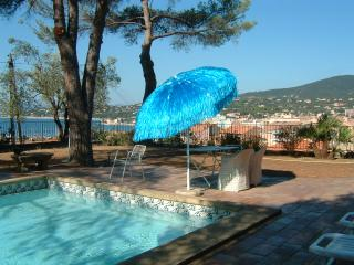 Poolside Parasol Perfection