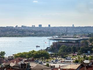 Best price!  Beyoglu,style,comfortbl,sea view flat