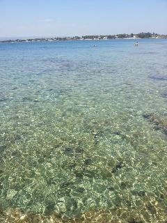 Le acque cristalline dell'Area Marina Protetta