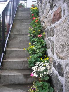 Stone steps leading up to property bedecked with flowers