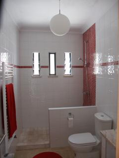 The bathroom downstairs
