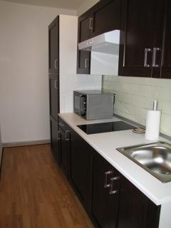 Cucina, microonde, piastre elettriche, frigo e congelatore separato.