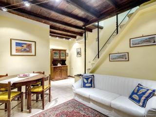 P&F Apt! Two steps from Piazza Navona!! Now low season 30% off