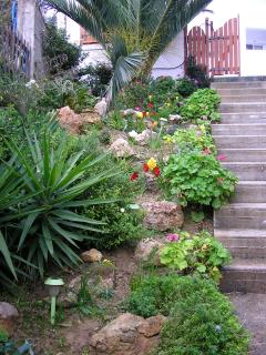 The Rockery Garden Leading up to  Robins Nest