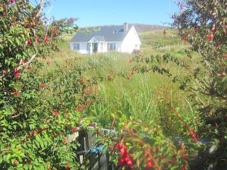 Inishbofin Island Apartment with FREE WiFi
