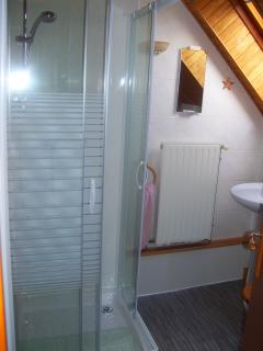 There is a private shower room with washbasin and WC.