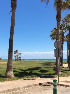 The green beach metres away from the block of apartments