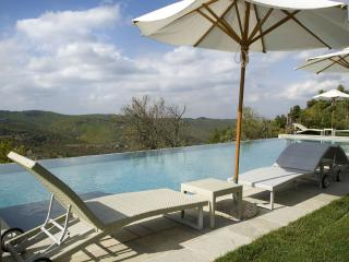 Luxury Chianti apartment with shared pool, private garden, barbecue