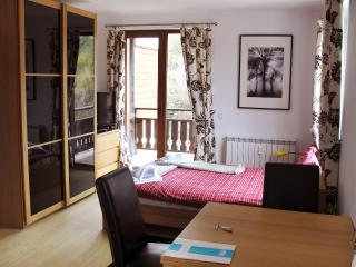Cosy Studio in PREDELA2 near the ski road, Bansko