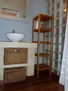 La salle de bain du bas ayant un accès facile depuis le jardin