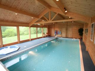 Indoor Heated Swimming Pool and Hot Tub