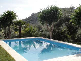 Pet-family friendly villa with private swimingpool, walking distans to amenities, Cortes de la Frontera