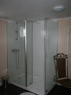 the shower in the bigger bathroom,only one shower in the house,but 2 wc
