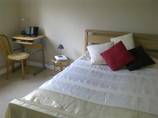 Bright and clean Double room Kew Gardens flatshare wih one lady