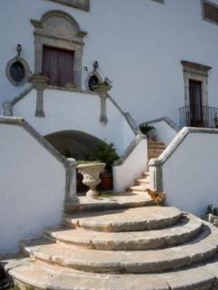 Dettaglio della scalinata di ingresso