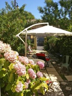 Le jardin de la villa, les hortensias depuis la fenêtre du salon