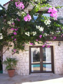 Bougainvillea over French Doors