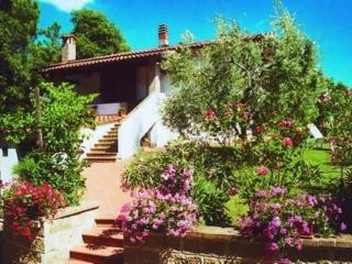 Romantic Tuscan cottage, sleeps four,  total priva, Casole d'Elsa
