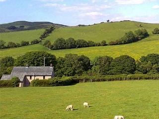 Character property in Mid Wales - 24539, Machynlleth