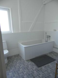 Large family bathroom with shower and bath tub
