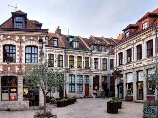 APPART HOTEL HARIS LILLE