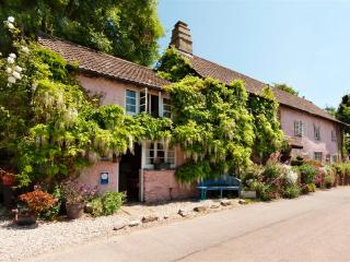 Traditional Devon Cottage in River Dart village, Brixham
