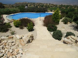 The large private infinity pool set in mature landscaped gardens
