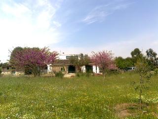 VILLA GIULIA, Corigliano d'Otranto