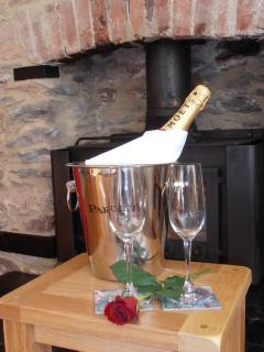 Special Occasion?  Winter special! Champagne on arrival-stocked fridge-late depart.CALL for details.