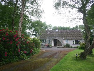 Easter Shortbreak -Hideaway cottage nr Bournemouth, set in woodlands -accessible, Ferndown