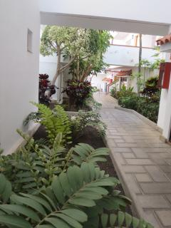 Landscaped garden pathway leading to apartment