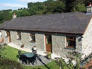 Yr Onwydden -  family cottage, hot tub - 25595, New Quay
