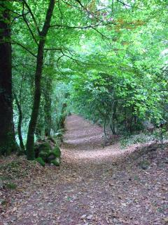 Couetilliec Cottages has a myriad of sylvan pathways for you to explore