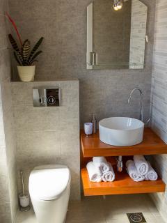 Green Room bathroom with walk in shower