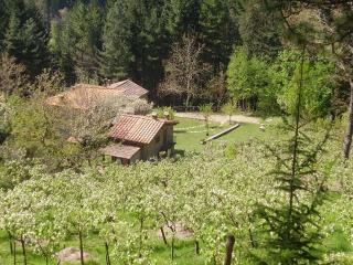 Casale Camalda Bioagriturismo, Arezzo