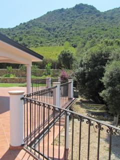 Vineyards out the back - not neighbours