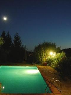 Moonlight and the pool