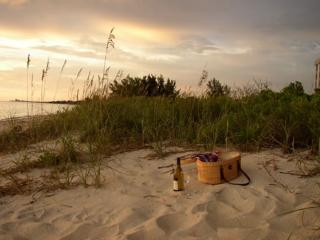 Private Gulf  beach at condo