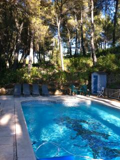 Pool under the pine trees to guarantee you shade and no sun burn!