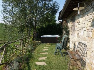 IL VICHIACCIO - Casa Fienile Jacuzzi in the garden, Florencia