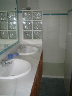 Master en suite walk in shower room