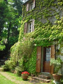 Charming Versilia Cottage