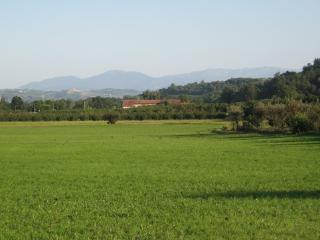 Agriturismo La Tilia