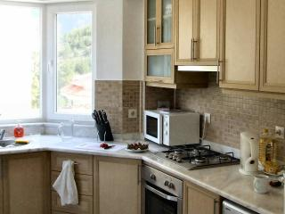Luxury well equipped kitchen with patio door leading to outdoor dining terrace