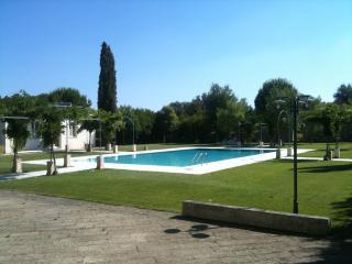 Appartamento nel Salento -Tenuta S.Andrea- Galline